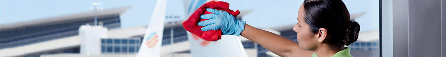 cleaning_supplies_terminal